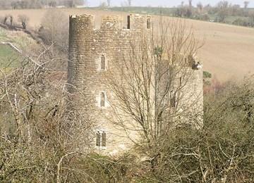 Farleigh Hungerford Castle, Norton St  Philip - 1015871