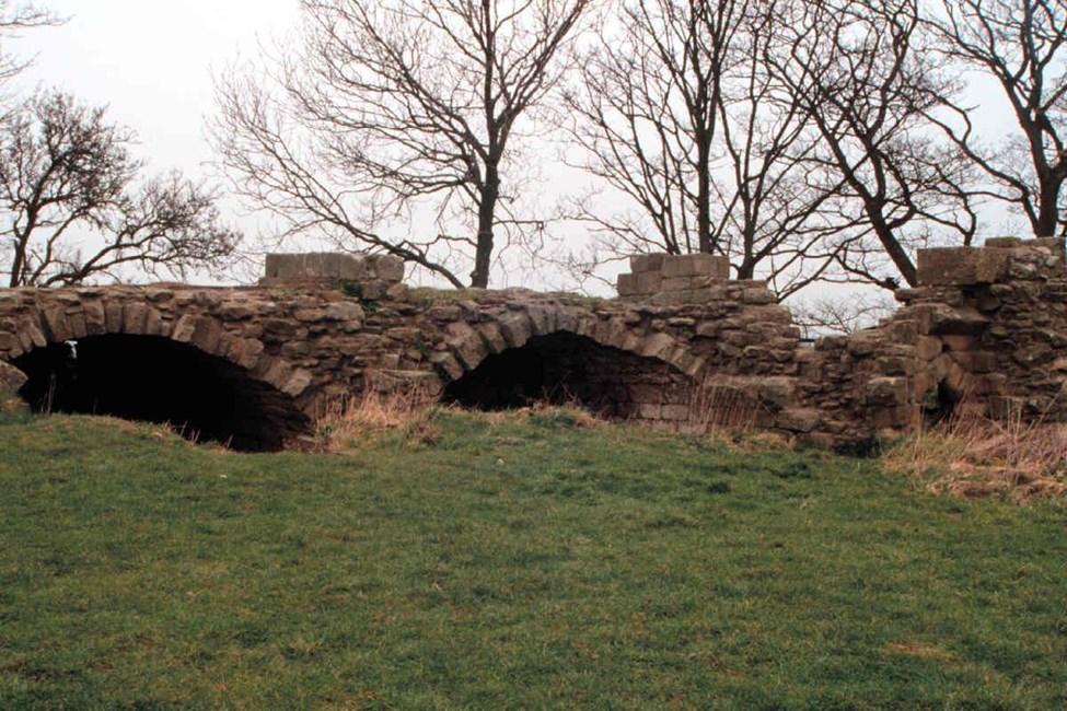 Ruins of Whorlton Castle Undercroft, Castle Bank, Whorlton, Hambleton - North York Moors (NP)