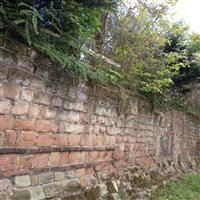 City walls: section extending 130 feet (40 metres) from the back of No. 27 New Street to Windsor Row - Worcester