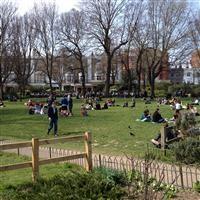 The Royal Pavilion Gardens, Brighton - Brighton and Hove, City of (UA)