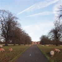 Danbury Park, Danbury / Sandon - Chelmsford