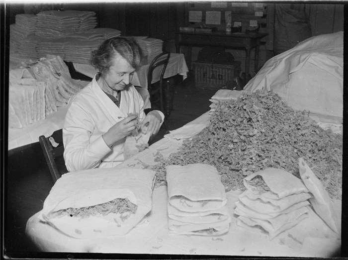 Making Sphagnum Moss Dressings Glasgow Scotland Educational