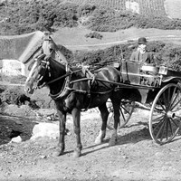 Horse and carriage, Cornwall