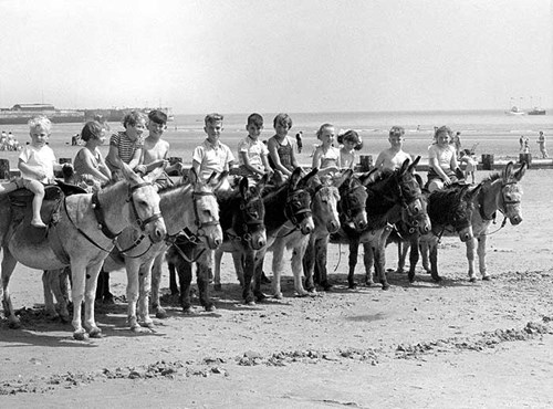 Donkey rides on Bridlington Beach, East Yorkshire