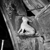 Carving of a rabbit in All Saints' Church, Necton, Norfolk