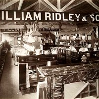 William Ridley And Sons, Showroom,  Abbey Wharf, Reading, Berkshire