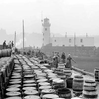 Barrels of fish in Scarborough harbour, North Yorkshire
