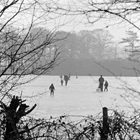 Skating in Richmond Park, Richmond and Kew, Greater London