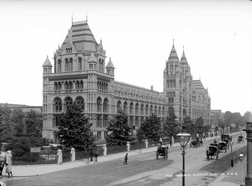 Natural History Museum,  Cromwell Road, South Kensington, Brompton, Greater London