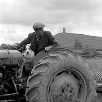 A farmer at work, Glastonbury, Somerset