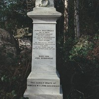 Monument to James Braidwood, Abney Park Cemetery, Stoke Newington, Greater London