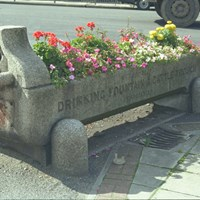 Drinking Fountain and Horse Trough, Mitcham, Greater London