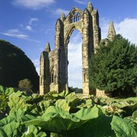 Guisborough Priory, Guisborough, Redcar & Cleveland