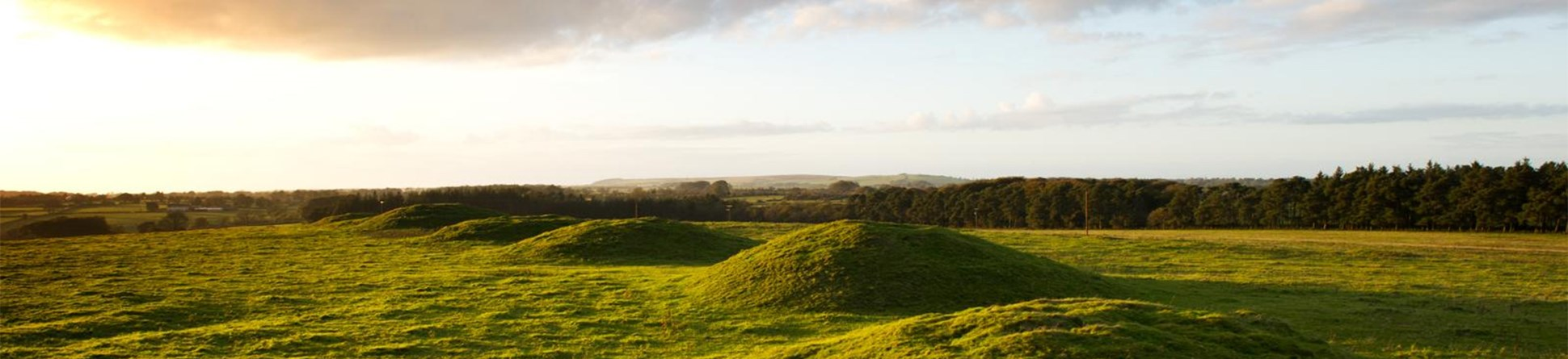General view of five round barrows at Ashen Hill, Priddy, Wells, Somerset.