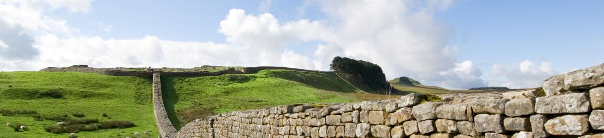 View of section running east from Housesteads Fort.