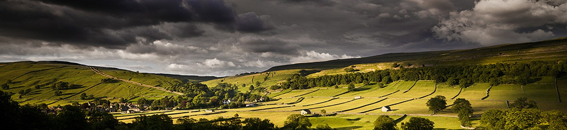 Field barns in the landscape of the Yorkshire Dales National Park