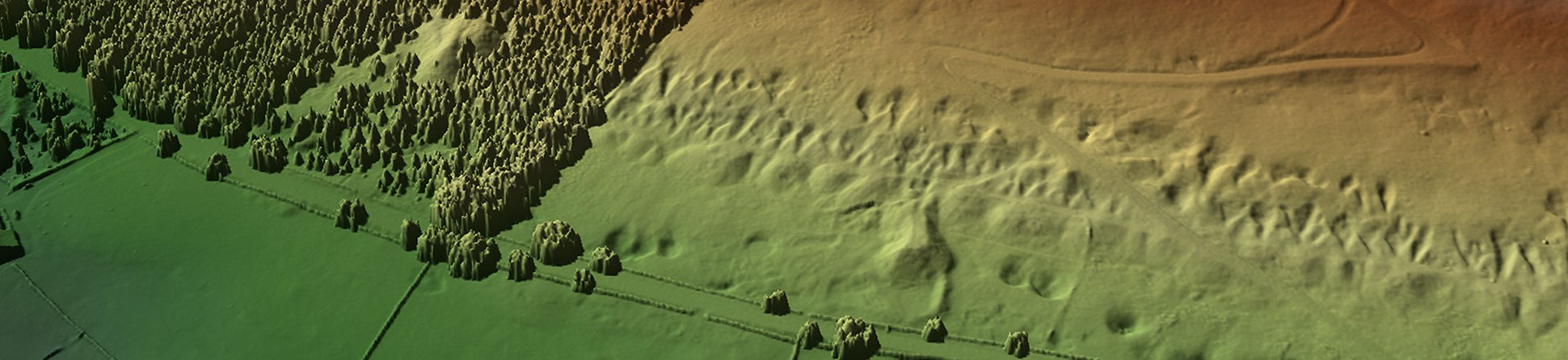 Colour image showing a stylised ground surface with trees to left and disturbed ground with mounds and pits to right