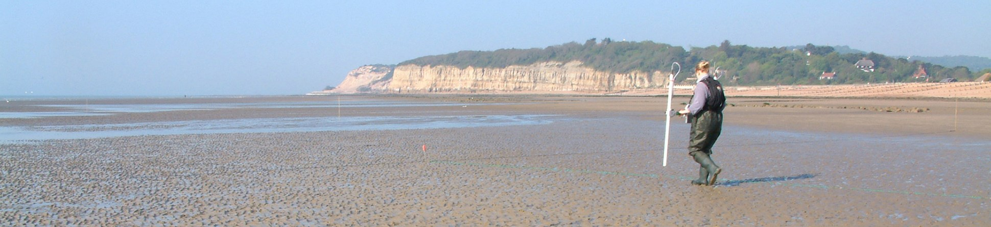 Colour photograph showing a woman in waders walking with a metal frame across a beach with low cliffs in the background