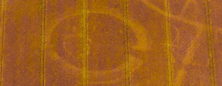 Colour aerial photograph showing a field in crop with patterns in golden brown against a darker orange background