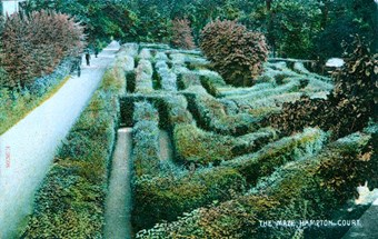 A general view of the maze, 1904-9, at Hampton Court Palace