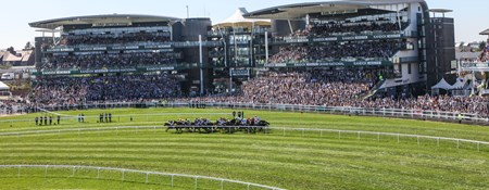 The packed stands on race day at Aintree with a tightly bunched group of horses galloping down the track in the foreground.
