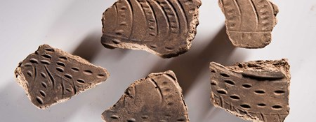 Fragments of a decorated jar