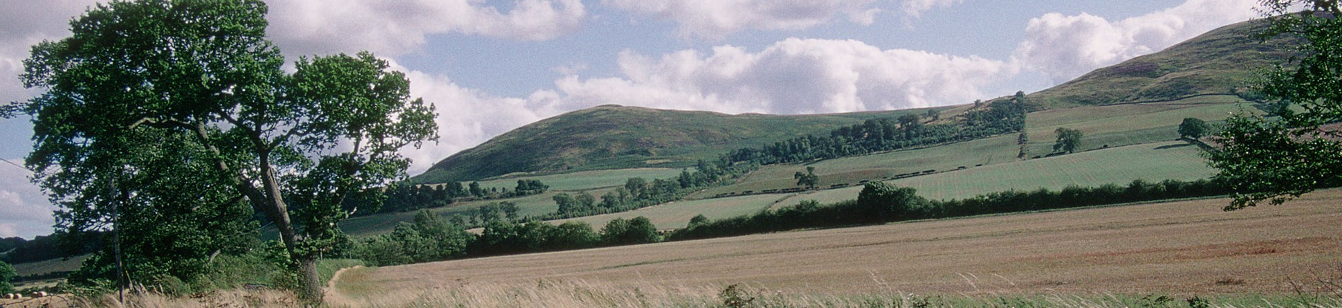 The battlefield of Homildon Hill, Northumberland
