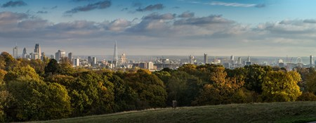 Image of London's skyline from Hampstead Heath