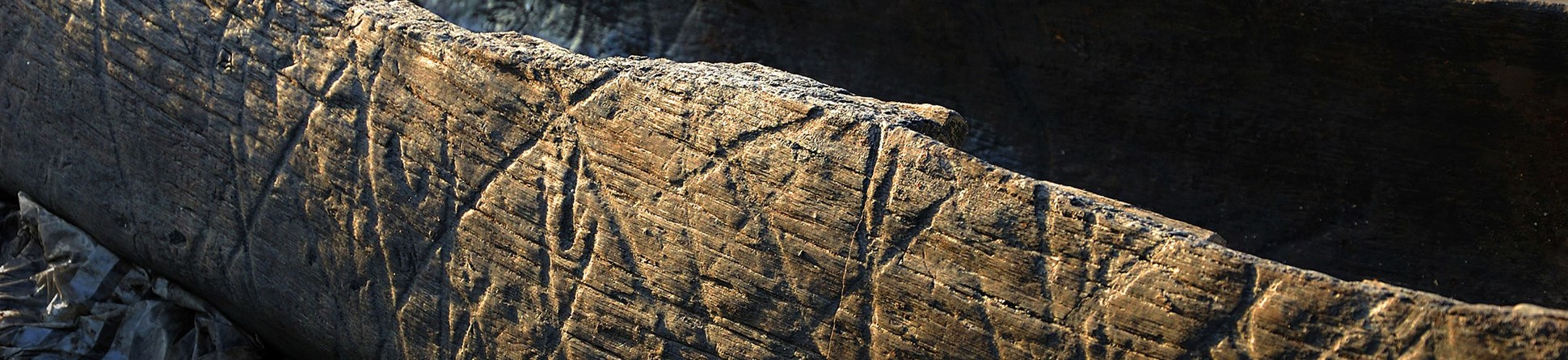 Detail of Boat 1, showing diagonal grooved markings on the interior and exterior of the 6.3m oak logboat which was excavated in 2011–12. This boat, which dates to the Early Iron Age, was found in the Must Farm palaeochannel c. 250m upstream of the location of the current timber platform investigation.